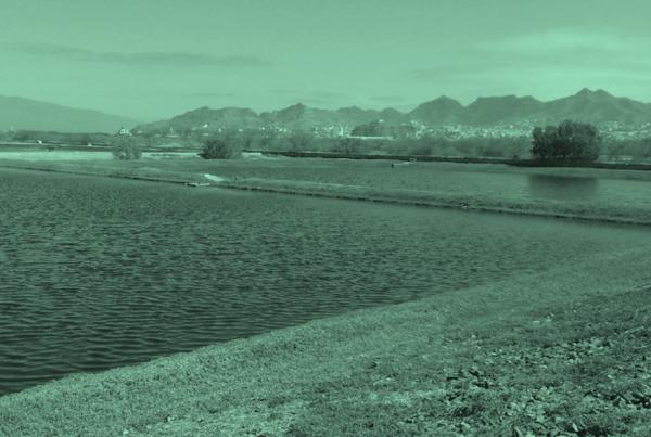 Reutilização das águas tratadas e tratamento das lamas de Mindelo
